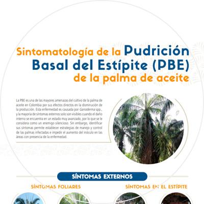 Afiche Sintomatología de la Pudrición Basal del Estípite (PBE) de la palma de aceite