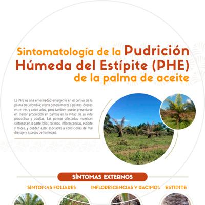 Afiche Sintomatología de la Pudrición Húmeda del Estípite (PHE) de la palma de aceite